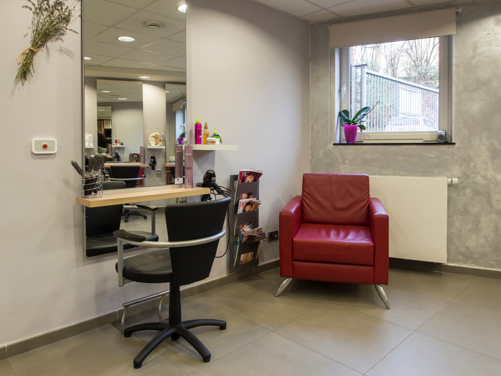 Coiff 39 design - Salon de toilettage hainaut ...