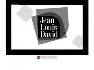Upload a picture - Salon jean louis david ...